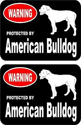 2 protected by American Bulldog dog car home window bumper vinyl stickers #A