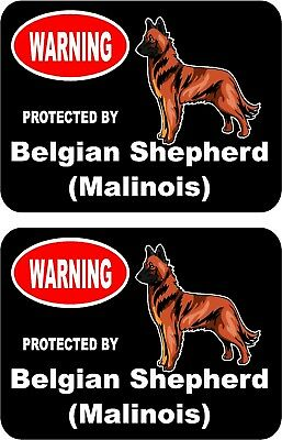 2 protected by Belgian Shepherd (Malinois) dog home window vinyl stickers #C