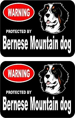 2 protected by Bernese Mountain dog car home window vinyl decals stickers #C