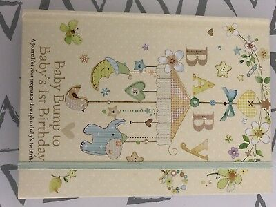 Baby Bump To First Birthday Book