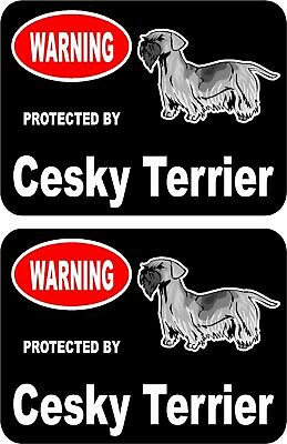 2 protected by Chesapeake Bay Retriever dog car home window vinyl stickers #A