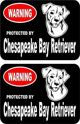 2 protected by Chesapeake Bay Retriever dog car home window vinyl stickers #B