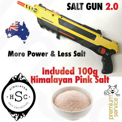 Salt Gun Insect Killer Shooter Buster For A Bug Fly Bugs Flies Mosquito Mozzies