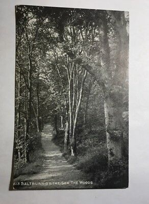 The Woods Saltburn-by-Sea Yorkshire Postcard