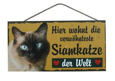 Siam Katze Holzschild Türschild Tierschild Cat Wood Sign 25 cm