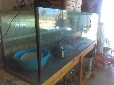 Big fish tank, stand and florescent light