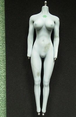 1:6 Scale TBLeague PHICEN Z-Girl - Female Seamless Super-Flexible Body