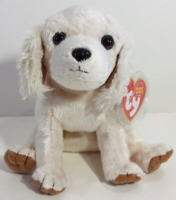 """TY Beanie Babies """"LAPTOP"""" the Cocker Spaniel Dog - MWMTs! RETIRED! A MUST HAVE!"""