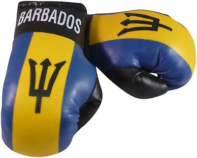 Show Your Colours Barbados Mini Boxing Gloves