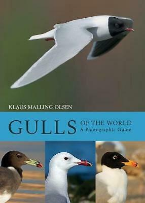 Gulls of the World: A Photographic Guide by Klaus Malling Olsen Hardcover Book F