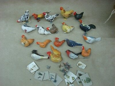 Antique Early 1900's Germany Chalkware Birds! Group Of 19