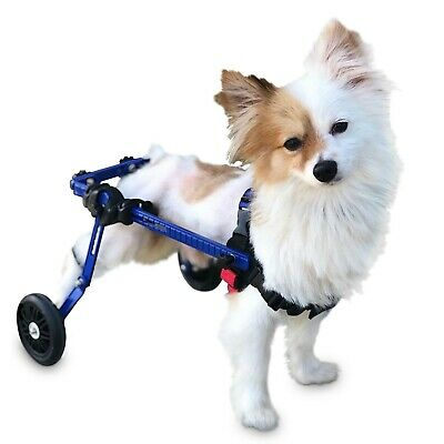dog wheelchair extra small for mini toy breeds up to 10 lbs by