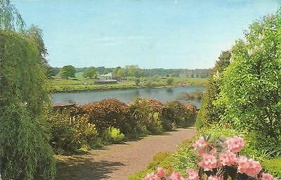 Postcard - THE RIVER TWEED AT KELSO, SCOTTISH BORDERS, SCOTLAND