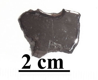 NEW !!! Twannberg Iron IIG meteorite, excellent complete slice, 3.6 grams