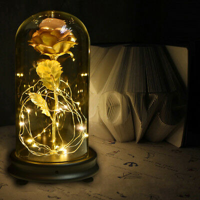 WR Beauty and the Beast 24k Gold Foil Rose Glass Dome /w Light Love Gift For Her