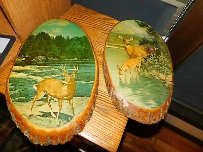 1960's Deer Decoupage Pictures on Wood Slabs USA Vintage Doe and Buck