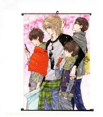 Hot Japan Anime Super Lovers Kaidou Ren Cosplay Home Poster Wall Scroll 40*60cm