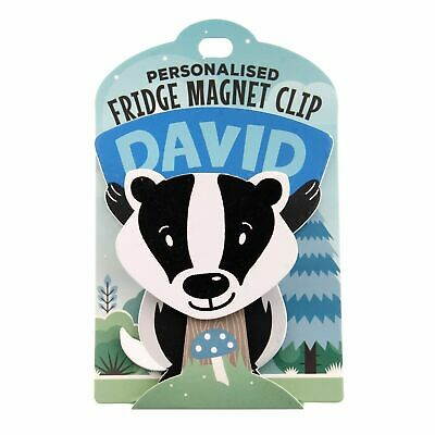 Fridge Magnet Clip David