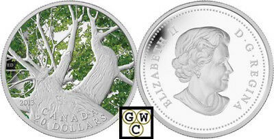 2013(Spring) Maple Canopy' Colorized Proof $20 Silver Coin 1oz .9999 Fine(13192)