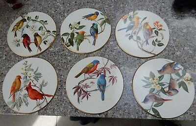 VINTAGE 1960s Set of 6 Bird Print TABLEMATS  by AMTR (in an Audubon style)  VG