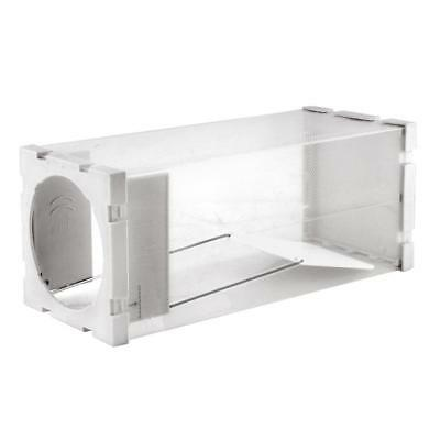 Clear Humane Rat Trap Cage Live Animal Pest Rodent Mice Mouse Control Bait