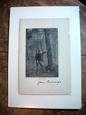 JOHN BURROUGHS Autograph PHOTO In the Woods WITH PROVENANCE on Back