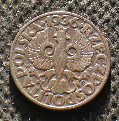 Old Coin Of Poland 5 Groszy 1936 Second Republic Crowned Eagle