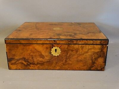 19thC Antique VICTORIAN BURL WOOD Old ARTIST CHEST Lap WRITING DESK Cigar BOX