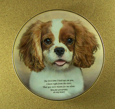PAWPRINTS ON MY HEART Plate Poetry of the Cavalier King Charles Spaniel Danbury