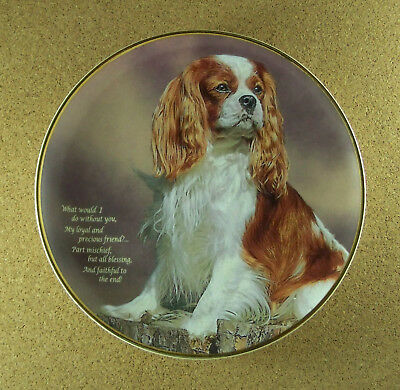 LOYAL AND PRECIOUS Plate Poetry of the Cavalier King Charles Spaniel RARE HTF