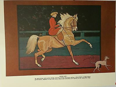 Vntge Sidesaddle Dressage Saddlebred Arab Whippet George Ford Morris 1952 Print