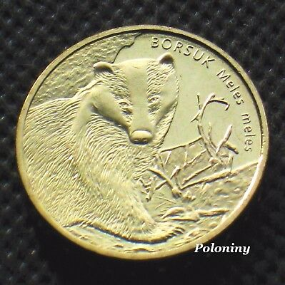 Commemorative Coin Of Poland - Animals Of The World Badger - Borsuk (Mint)