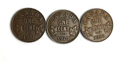 1920 , 1921 , 1922  Date Run of Canada Small Cent - Better Dates in VF 831-3Z