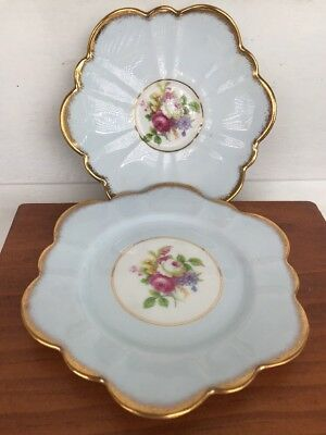 VINTAGE Salisbury fine English bone china saucer and cake plate Pale Blue Floral