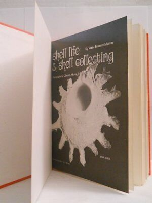 Shell life & shell collecting by Sonia Bennett Murray Book The Cheap Fast Free