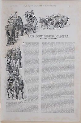 1896 Boer War Era Article Story Four Footed Soldiers Captain Bray Elephant Camel