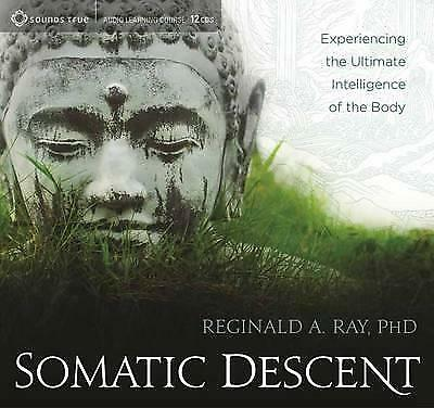 NEW Somatic Descent : Experiencing the Ultimate Intelligence of the Body