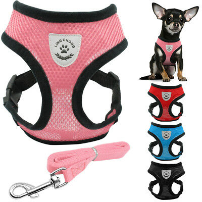 Soft Air Mesh Small Dog Cat Harness and Lead Set Adjustable Puppy Vest Pink Blue