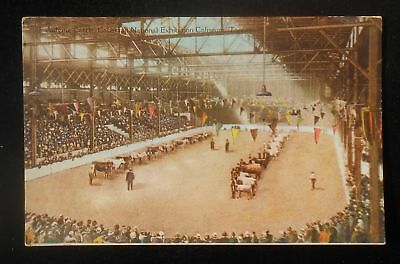 1910s? Judging Cattle Canadian National Exhibition Coliseum Toronto ON Canada PC