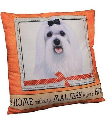 Maltese Throw Pillow A Home Without is Just a House Dog New White Orange Beige