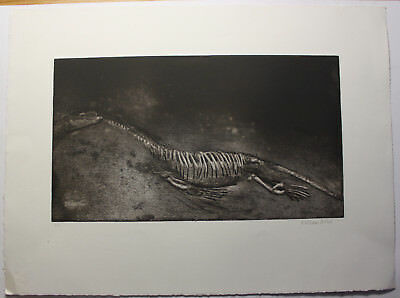 "William Wires ""Dinosaurierskelett"" ohne Jahr Grafik Kunst Druck Original sf"