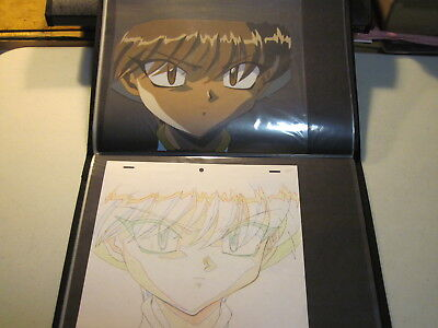 CLAMP production Cel