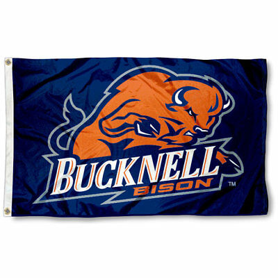 Car Sticker *Free Shipping Bucknell Bison NCAA Color Die-Cut Decal