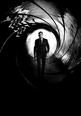 JAMES BOND; SKYFALL Movie PHOTO Print POSTER Textless Film Art Daniel Craig 001