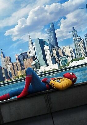 SPIDER-MAN; HOMECOMING Movie PHOTO Print POSTER Tom Holland Peter Parker 008