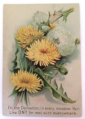 Victorian Trade Card for Clark's O.N.T. Spool Cotton ~  I'm The Dandelion