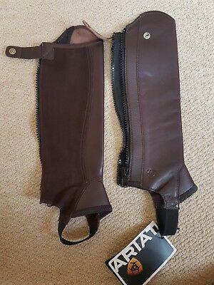 """Ariat Junior Concord chaps, brown Leather, Size helght 16"""" calf 10.5"""", Brand New"""