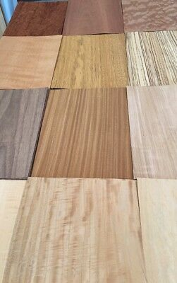 "Wood Veneer Variety Pack: 12 WIDE Sheets (12""x9"")"