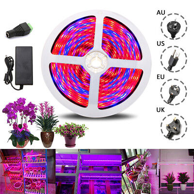 0.5m-5M 5050 LED Strip Luce Full Spectrum Plant Grow Light Indoor Waterproof