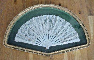 Exquisite 19th century Brussels Point De Gaze Lace Fan in Frame